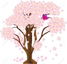 cherry blossom tree sakura vector cherry blossom tree vector royalty free cliparts