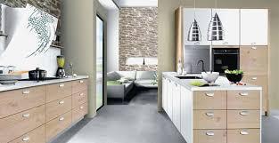 cuisines bains primaire 50 portraits cuisines et bains très populaire