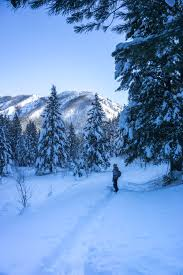 8 adventurous things to do in banff in the winter