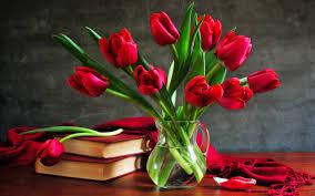 composition romantic tulips hd desktop wallpaper hd desktop
