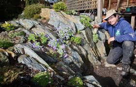 Rock Garden Society Paul Spriggs