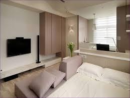 Mini Apartment Living Room Living Room Tiny Apartment Design Ideas Studio Interior Ideas