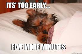 Meme Sleepy - its too early five more minutes sleepy puppy quickmeme