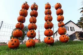 family fun in a camden pumpkin patch syracuse new times