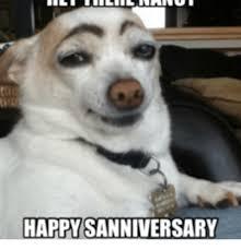 Cat Happy Birthday Meme - happy sanniversary happy birthday nancy cat meme on me me