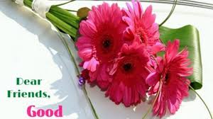 Photos Of Flowers Good Morning Flowers Images For Download Facebook Hd Quote