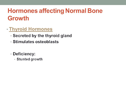 Normal Bone Anatomy And Physiology Bio 137 Anatomy U0026 Physiology I Ppt Video Online Download