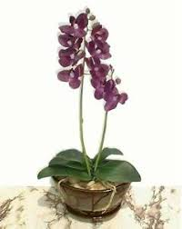 butterfly orchid 19 48cm artificial touch flower