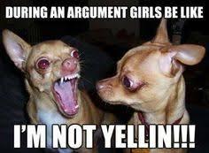 Girls Be Like Meme - funny chihuahua meme girls be like chihuahuas quotes funny