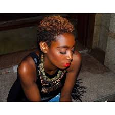 nappy hairstyles 2015 65 best short nappy hairstyles images on pinterest natural hair