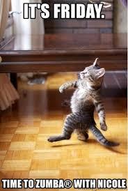Zumba Meme - it s friday time to zumba with nicole walking cat meme generator