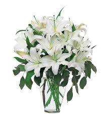 white lillies white lilies tf24 1 90 86