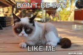 Meme Generator Grumpy Cat - grumpy cat memes generator image memes at relatably com