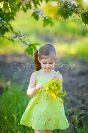 Cute little girl with field flowers  Stock Photo  Colourbox
