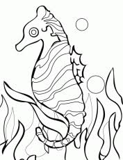 sea plants coloring pages coral reef coloring pages coral free printable coloring pages for