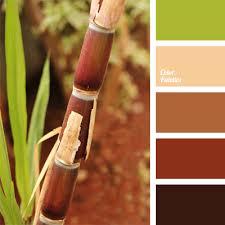 color palette paint inspiration paint colors paint palette