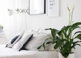 pflanzen für schlafzimmer hausdekoration und innenarchitektur ideen kleines schlafzimmer