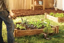What Type Of Soil For Vegetable Garden - tips to planting vegetable seeds at the home depot