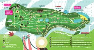 England On The Map by Garden Map Trebah Garden Cornwall