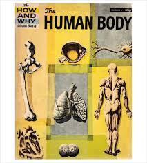 Human Anatomy Pdf Books Free Download Human Body Template U2013 24 Free Word Pdf Ppt Documents Download