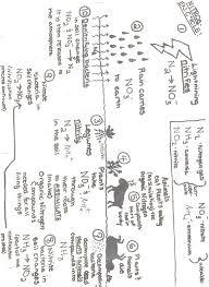 9th grade science worksheets worksheets reviewrevitol free