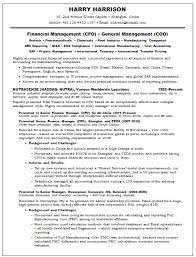 Sample Resume For Finance Executive by Cfo Sample Resumes Free Resumes Tips