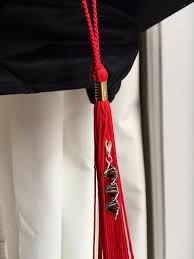 custom graduation tassels dna graduation cap tassel accessory custom by toutdoucement