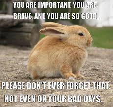Encouragement Memes - 15 encouragement memes that will surely uplift your day