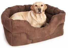 Petsmart Dog Bed Bright Dog Bedz 88 Dog Beds Walmart Tweed Dog Bed Dog Beds
