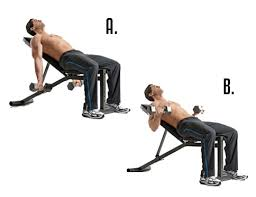 Bench Press For Biceps - 10 of the most effective tricep and bicep workouts with dumbbells