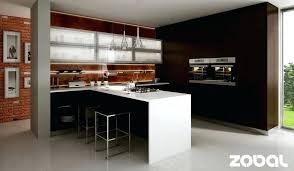 german kitchen cabinet german kitchen cabinets brands kitchen cabinet doors with glass