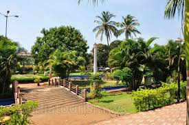Different Types Of Garden - margao municipal garden different types of palm trees are growing