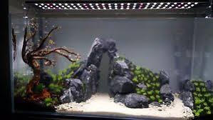 Aquarium Aquascaping 3 Kg Natural Dark Grey Stone For An Aquarium Aquascaping Iwagumi