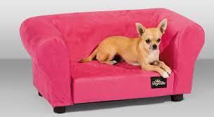 canap pour petit chien pas cher canapé chien intérieur déco