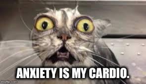 Anxiety Cat Memes - anxiety cat meme www imgarcade com online image arcade