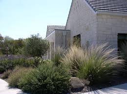 native texas plants for shade how to design native landscapes