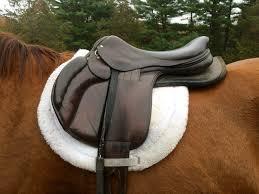 Horse Saddle by Saddle Fitting U2013 Equine Ink