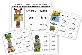 free printable worksheets vertebrates invertebrates animals and their groups sorting cards ages 5 8 homeschool den