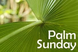 palm for palm sunday mini musical drama for palm sunday nlw international