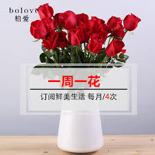 Monthly Flower Delivery China Artificial Pink Carnations China Artificial Pink Carnations