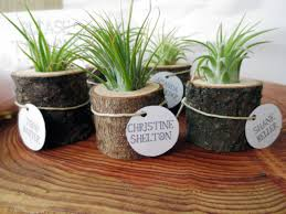 plant wedding favors 14 diy wedding favors your guests will actually want hgtv s