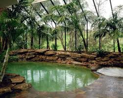 Natural Backyard Pools by 158 Best Swimming Pool Images On Pinterest Backyard Ideas Pool