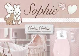 theme de chambre bebe décoration chambre bébé lapin