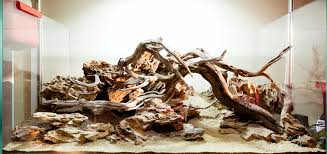 aquascaping layouts with stone and driftwood choosing the best aquarium driftwood aquarium info