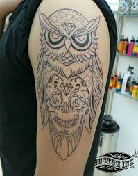 tattoo artist serch traditional owl and skullcandy tattoo