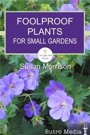 blue planet garden blog gardening app foolproof plants for small