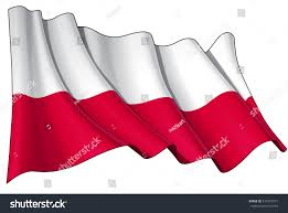 illustration waving national polish flag without stock vector