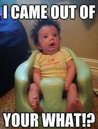 I Came Meme - i came out of your what funny baby meme