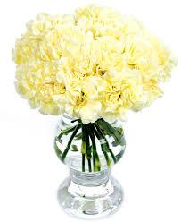 weekly flower delivery weekly flower delivery carnations