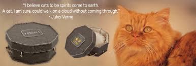 cat caskets cat caskets